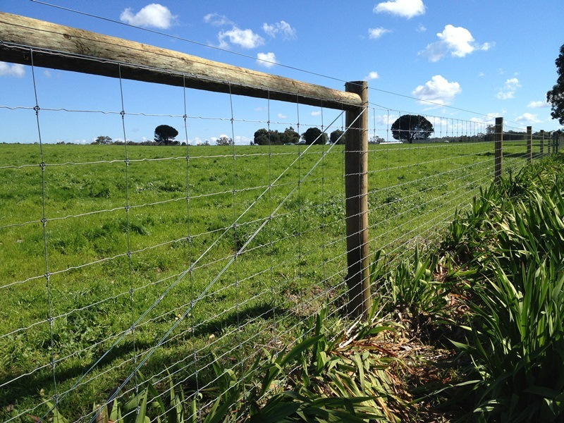 Southern Wire Griplock Fencing